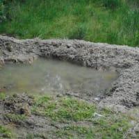 山間の田圃の水不足・・・先日作ってもらった、湧き水を溜めるための小さな池から、初ポンプアップ!何とか田圃も生きながらえるかも・・・