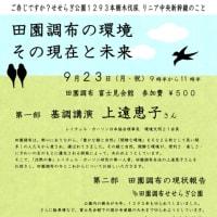 上遠恵子さん講演 田園調布の環境 その現在と未来 せせらぎ公園1293本の樹木伐採・リニア中央新幹線