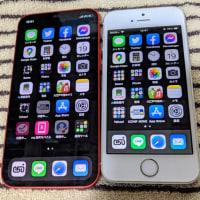 iPhone 12 mini iOS 14.3 を楽天モバイルで使用開始しました