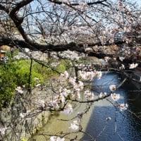 3327)京都の・・・