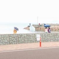6月2日  堀江港  サビキ釣り