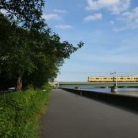 8月の散歩写真①