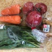 夏野菜の苗買いに~