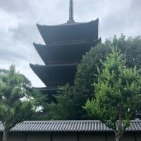 とっても素敵な京都御苑♪