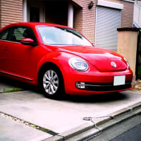 No.4614  beetle.
