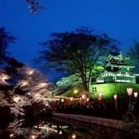 日本三大夜桜♪