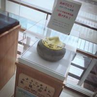 北海道ツアー!ありがとうございましたヽ(´▽`)/(☆写真盛り沢山☆)