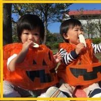 ☆つくしぐみ 秋の様子☆