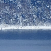 摩周湖の〇〇連鎖 Lake Mashu