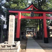 丸子山王日枝神社、おまけに大楽院