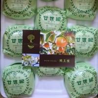 関西の美人税理士さんから頂きました!廿世紀梨は最高です!