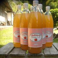 竹嶋有機農園の 丸ごとりんごジュース