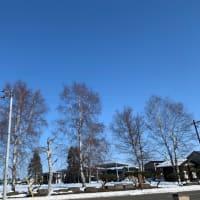 風も無く暖かい日ですよ(^O^☆♪