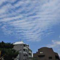 本日は私についてくるように上空に一か所だけ広がる意味深雲。超けったいな雲。あばら骨の形をした雲。