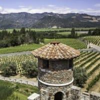 Từ Bay đến Vine: San Francisco đến California Wine Country