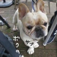 那須旅行2011 -其の弐-