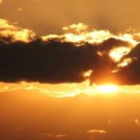 『 こころあれば鵺あらわれよ雲の月 』遊行期游泳575yzn2804