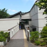 花巻市博物館のオニグルミ(鬼胡桃)2019年8月11日(日)