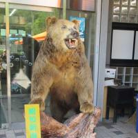 北海道旅行3日目