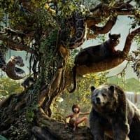 【映画】ジャングル・ブック(映画鑑賞記録108)…2本見ても未だに話が飲み込めない
