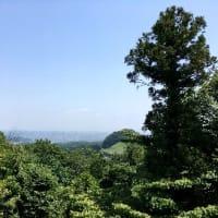 草戸山~高尾山口駅から~