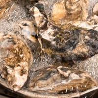 今シーズン牡蠣食べ放題のご提供も残り僅か!小田原早川漁村 漁師の浜焼 あぶりや