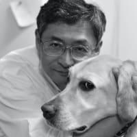 犬によるコロナ診断 正確さは96-99%?
