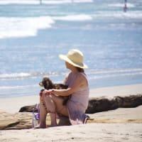 仔犬と海を眺める女性
