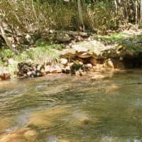 黄渓の湯探索