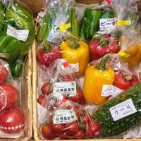 日替わりマルシェ「奈良産直のお野菜」♪