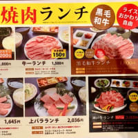 鶴橋・焼き肉・トンボ帰り。ww