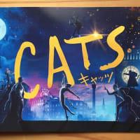 映画「CATS」を見に行った