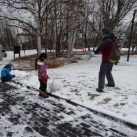 雪景色 Snow  scene
