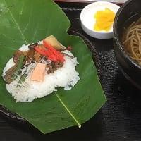 初夏の名物「ほお葉寿司定食」が始まりました!