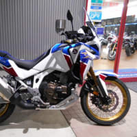 CRF1100 AfricaTwin DCT 試乗車が用意できました!