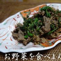 肉・肉・お肉♪