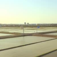 東海道本線は磐田-御厨の車窓(2021年4月  オマケは上越新幹線)