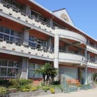 四国最西端の伊方町立三崎中学校とヤマザクラ咲く伽藍山