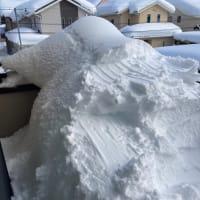 記録的な大雪その後・・・