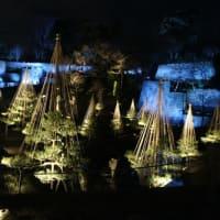 玉泉院丸庭園(チョコなし)