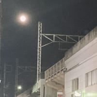 12月19日(日)静岡「ライフタイム」