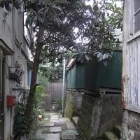 0732 市谷薬王寺町の小階段
