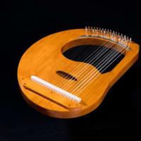28弦リラを弾いて1年