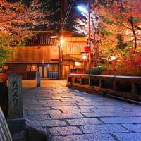 祇園白川の夜桜 照明の点灯試験