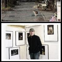 東日本大震災動物救護シェルター 写真展