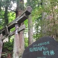 「フクシマン土屋」の「イイトコ探訪 福島県!」(第八回) 原生林山中の古社を訪ねる