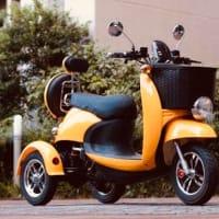 買う前に考えるべき 最高速度30㎞の・・・電動三輪ミニカー