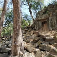 森の中に眠る巨大寺院「ベンメリア」を訪ねて