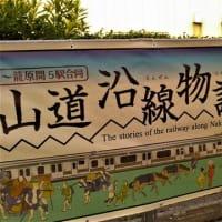 JR「指扇」駅~「鴻巣」駅。その9。原馬室橋。御成橋。ポピー。川幅日本一。(「荒川」を遡る。第3日目。)
