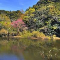 山の辺の道から見た風景/奈良県天理市杣之内町